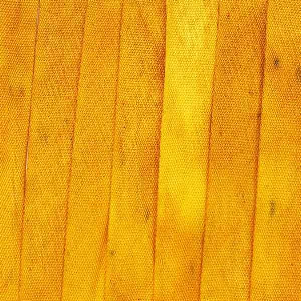 Painters Baumwollband Klimt