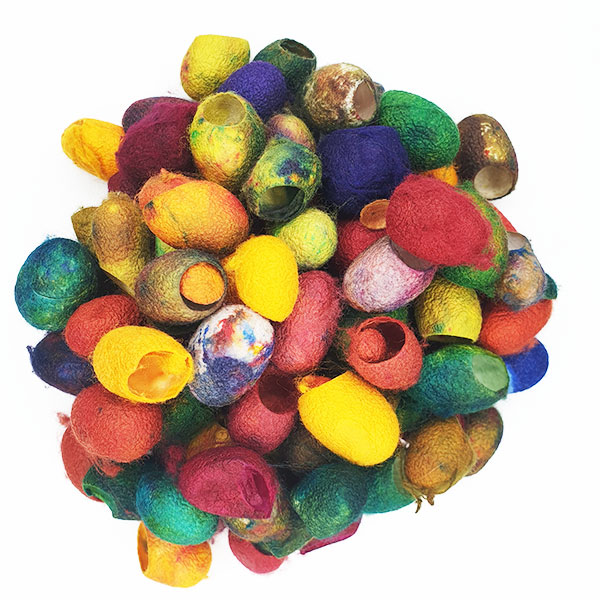 Painters Silk Cocoons