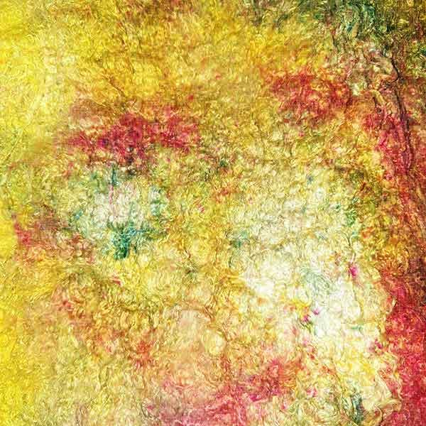 Painters Silk Cocoon Sheet VanGogh