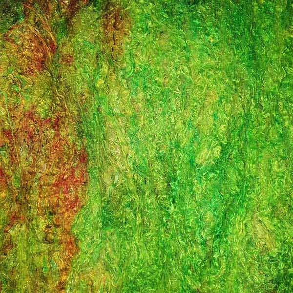 Painters Silk Cocoon Sheet Rousseau