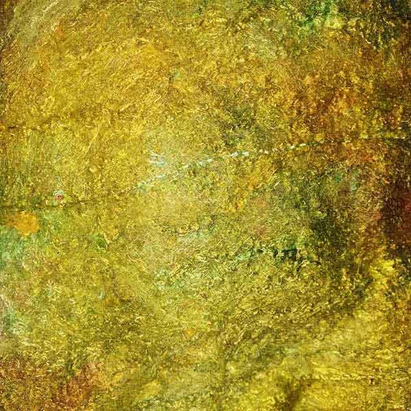 Painters Silk Cocoon Sheet Hopper